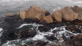 Tidal pool loop - Pacific Grove, California stock footage