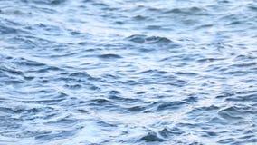 Waves Splashing. Waves Hitting The Rocky Sea Shore stock footage
