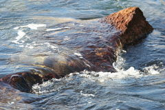 Waves splashing over rock. Ocean waves splashing over brown rock Stock Photography