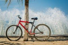 Waves splashing red bicycle leaning on palm tree Royalty Free Stock Image