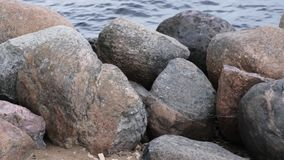 Waves and stones on the seashore in summer.  stock footage