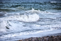 Waves of the stormy sea Stock Image