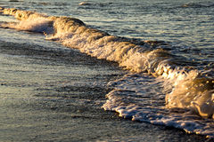 Waves at sunrise Stock Image