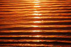 Waves in sunrise Gold Coast Australia Royalty Free Stock Image