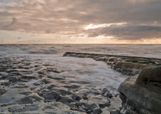 Waves in the Sunrise. Sunrise on a rocky beach with tide slowly making its way in as the waves gently rub against the rocks royalty free stock photo