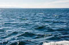 Waves on surface of water with cloudy sky. Deep blue color royalty free stock image