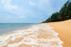 Waves on tropical sandy beach with green trees Stock Images