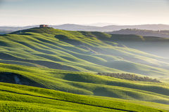 Waves in Tuscany Stock Photography