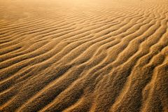 Waves of undulated sand dunes at sunset. Stock Photo