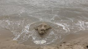 Waves wash off the sand statue of the face. stock footage
