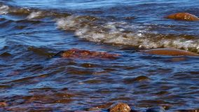 Water washes the stones on the river stock footage