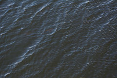 Waves on the water. Photography sea waves texture and background Stock Photos