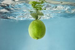 A whole lime with green leaves falls into the water on a blue background. Waves on the water surface from a falling green lime with leaves on a blue background stock photos