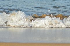 Waves. Water waves , beach with the sand like gold Royalty Free Stock Images
