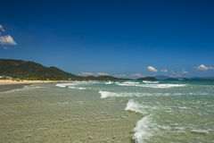 Waves on the wild beach in Vietnam. Wild beach in Vietnam with a great weather Royalty Free Stock Photos