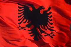 Waving Albanian red silk flag with printed black eagles in the center. Against the sky royalty free stock images