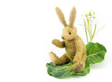 Waving bunny rabbit vintage soft toy. Copy space. Stock Image