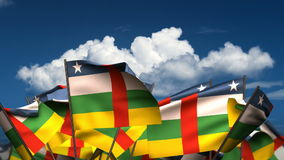 Waving Central African Flags stock footage