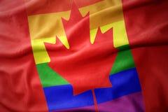 Waving canada rainbow gay pride flag banner. Waving colorful canada rainbow gay pride flag banner royalty free stock photos