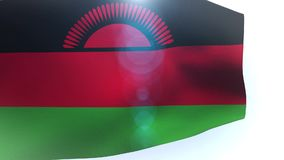 Waving colorful national flag of malawi wave. Video stock video footage