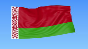 Waving flag of Belarus, seamless loop. Exact size, blue background. Part of all countries set. 4K ProRes with alpha. Flapping flag of Belarus, blue background vector illustration