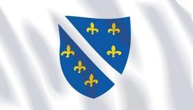 Waving flag of bosnia herzegovina royalty free illustration