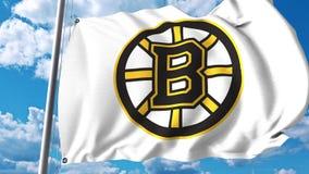 Waving flag with Boston Bruins NHL hockey team logo. 4K editorial clip. Waving flag with Boston Bruins NHL hockey team logo. 4K editorial animation vector illustration