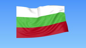 Waving flag of Bulgaria, seamless loop. Exact size, blue background. Part of all countries set. 4K ProRes with alpha. Flapping flag of Bulgaria, blue background vector illustration