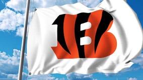 Waving flag with Cincinnati Bengals professional team logo. Editorial 3D rendering Royalty Free Stock Images