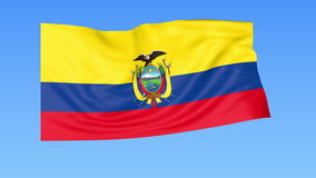 Waving flag of Ecuador, seamless loop. Exact size, blue background. Part of all countries set. 4K ProRes with alpha. Flapping flag of Ecuador, blue background royalty free illustration