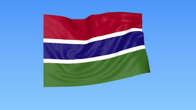 Waving flag of Gambia, seamless loop. Exact size, blue background. Part of all countries set. 4K ProRes with alpha. Flapping flag of Gambia, blue background stock illustration