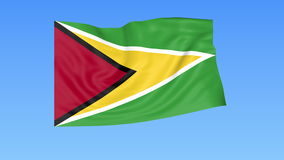 Waving flag of Guyana, seamless loop. Exact size, blue background. Part of all countries set. 4K ProRes with alpha. Flapping flag of Guyana, blue background royalty free illustration