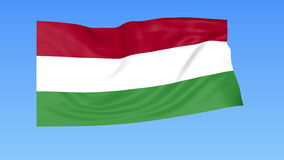Waving flag of Hungary, seamless loop. Exact size, blue background. Part of all countries set. 4K ProRes with alpha. Flapping flag of Hungary, blue background stock illustration