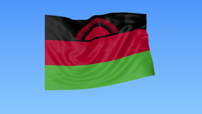 Waving flag of Malawi, seamless loop. Exact size, blue background. Part of all countries set. 4K ProRes with alpha. Flapping flag of Malawi, blue background vector illustration