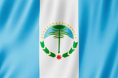 Flag of Neuquen Province, Argentina. Waving Flag of Neuquen Province, Argentina Stock Images
