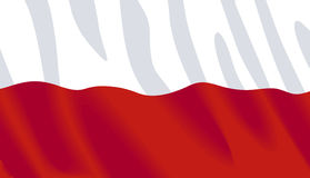 Waving flag of Poland. Polish wavy flag. Available in Vector format Stock Image
