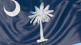 Waving flag of South Carolina state against blue sky. Seamless loop 4K clip. ProRes stock video footage