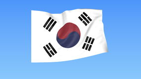 Waving flag of South Korea, seamless loop. Exact size, blue background. Part of all countries set. 4K ProRes with alpha. Flapping flag of South Korea, blue vector illustration