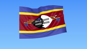Waving flag of Swaziland, seamless loop. Exact size, blue background. Part of all countries set. 4K ProRes with alpha. Flapping flag of Swaziland, blue royalty free illustration