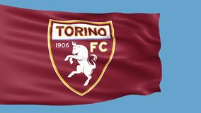 Waving flag with Torino football team logo stock footage