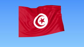 Waving flag of Tunisia, seamless loop. Exact size, blue background. Part of all countries set. 4K ProRes with alpha. Flapping flag of Tunisia, blue background stock video footage