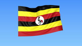 Waving flag of Uganda, seamless loop. Exact size, blue background. Part of all countries set. 4K ProRes with alpha stock video
