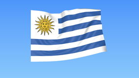 Waving flag of Uruguay, seamless loop. Exact size, blue background. Part of all countries set. 4K ProRes with alpha. Flapping flag of Uruguay, blue background stock footage