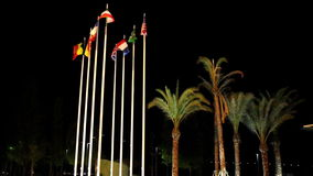 Waving flags of different nations. On the park. They usually symbolize a patriotic deed and usually includes military associations stock video