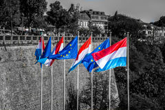 Waving flags of luxemburg and the european union Stock Images