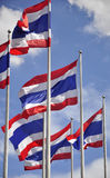 Waving Thai flags Stock Photos