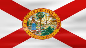 Waving Florida State Flag, ready for seamless loop stock footage