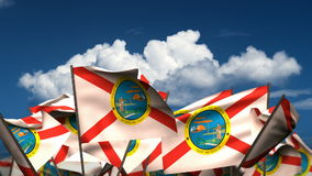 Waving Florida State Flags stock footage