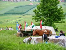 Waving hungarian flags on chariot during the Pentecostal celebration. stock images