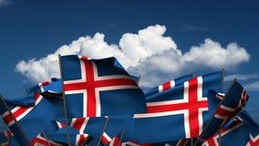 Waving Icelandic Flags stock video footage